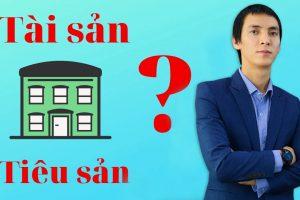 tai-san-tieu-san